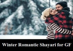 Winter Romantic Shayari for GF